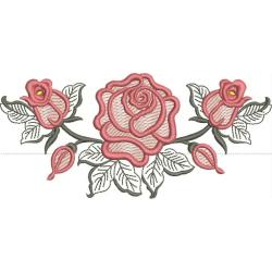Rosa com Moldura