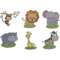 Pacote Safari