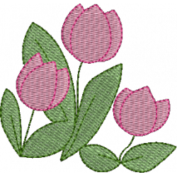 Florzinhas Tulipas